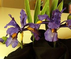 {2 pretty purple Irises by Shirley Wilson}