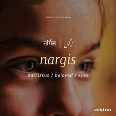 Teri nargisi ankhon me duniya h meri. Unusual Words, Rare Words, Unique Words, Cool Words, Urdu Words With Meaning, Urdu Love Words, Hindi Words, Dictionary Words, Poetic Words