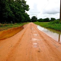 Rainy day in Fairhope! #Alabama #dirtroad ##Fairhope #southern