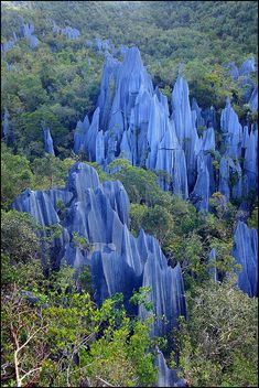 """libutron: """" The Pinnacles, Mulu National Park, Borneo, Malaysia   ©Manuel Beers Gunung Mulu National Park, on the island of Borneo, is the most studied tropical karst area in the world. The park is..."""
