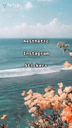Best Filters For Instagram, Instagram Story Filters, Foto Instagram, Instagram Story Ideas, Instagram Emoji, Instagram Frame, Foto Filter, Instagram Editing Apps, Creative Instagram Photo Ideas