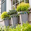 Jingle Bells on Potted Plants  Put outdoor plant containers to work year-round. Filling them with fir cuttings and trimming them with jingle bells add a little color and playfulness, even when the snow comes.