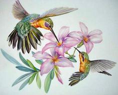 Fine Porcelain China Diane Japan Value Hummingbird Painting, Hummingbird Tattoo, Watercolor Bird, Watercolor Paintings, Hummingbird Pictures, China Painting, Beautiful Birds, Pet Birds, Painted Rocks