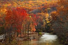 Devil's Den State Park, AR TRAVEL ARKANSAS BY  MultiCityWorldTravel.Com For Hotels-Flights Bookings Globally Save Up To 80% On Travel Cost Easily find the best price and ...