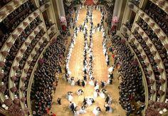 Famous Vienna Opera Ball 2014 - read on...