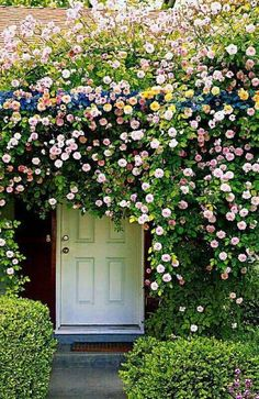 Doors let you in. Doors keep you out. Doors let you out. Doors keep you in. Doors let them out. Doors keep them in. Doors aren't just inanimate objects. Beautiful Gardens, Beautiful Flowers, White Flowers, Rose Flowers, Beautiful Life, The Secret Garden, Secret House, Colorful Roses, Climbing Roses