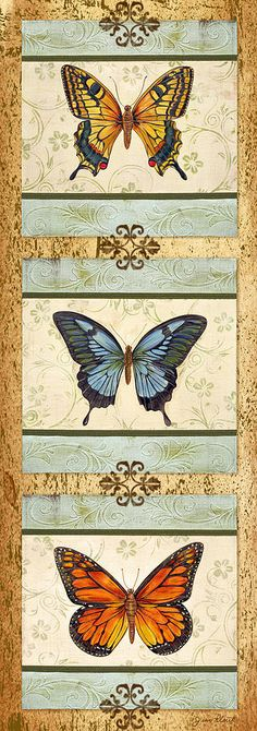 Butterfly Trio-4 Painting  - Butterfly Trio-4 Fine Art Print