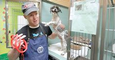 Meet Mark Imhof -- a former businessman who is now on a mission to make senior shelter dogs more adoptable by giving them free haircuts.