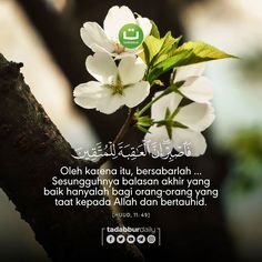 Quran Verses, Quran Quotes, Qoutes, Beautiful Islamic Quotes, Islamic Inspirational Quotes, Reminder Quotes, Muslim Quotes, Islamic Pictures, Cool Words