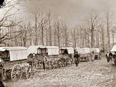 Washington, D. C. ambulance wagons at Harewood Hospital, Civil War. This picture was taken in 1863 near City Point, Virginia. The picture shows a wagon train of Civil War Ambulances. Battlefield medicine was still in its infancy at this time, and getting injured in combat usually meant dying of infection.