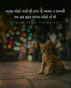 100 Best Gujarati Status For Whatsapp Quotes ગ જર ત