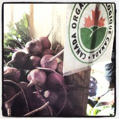 """@Jessie Sosnicki are the #best #organic #farmers ever #organicweek #inspiration #sustainable #beets #mealsheal #antiinflammatory #antiaging..."