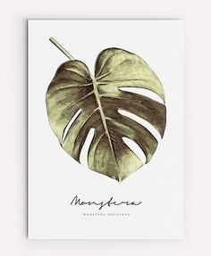 Monstera Print  PRINTABLE FILE. Watercolor Botanical by ILKADesign