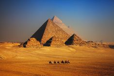 Private day trip from Hurghada to Cairo by bus to visit Giza pyramids, the Sphinx, and Egyptian museum, then return back to the hotel in Hurghada. Giza Egypt, Pyramids Of Giza, Egypt Art, Fauna Marina, Virtual Field Trips, Valley Of The Kings, Small Group Tours, Egypt Travel, Ancient Civilizations