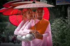 About Buddhist Nuns - Their Lives and Role: Burmese Buddhist nuns on an alms round.