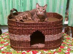 Поделка изделие Плетение Кошкин дом плетение из газет Мини МК Бумага газетная Трубочки бумажные фото 1