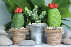 Stone cactus, in flowerpot, 3 piece, handmade, hand painting, stone painting, acrylic painting