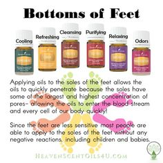 Young Living Essential Oils for Bottom of your feet