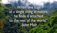 A truly important lesson for protecting the #Earth. #quote #JohnMuir