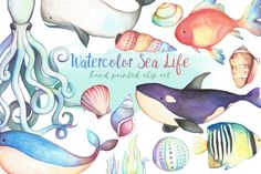 Watercolor Sea Life Clipart Bundle by Kenna Sato Designs on @creativemarket