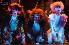 Cats musical press presentation in Paris