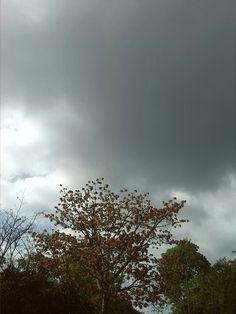 Inicio de lluvia