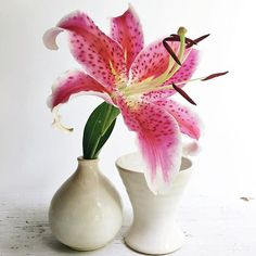 Show off! Minimalist vases let the blooms dance their hootchie magic. by leewolfepottery