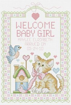 Janlynn - Welcome Baby Girl Birth Record Counted Cross Stitch Kit # 080-0468