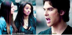The vampire diaries The Vampire Diaries, Vampire Dairies, Vampire Diaries The Originals, Best Tv Shows, Favorite Tv Shows, Niklaus Mikaelson Quotes, Kol And Davina, The Salvatore Brothers, Bonnie Bennett