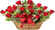 Flowers Gif, Beautiful Rose Flowers, Fake Flowers, Happy Flowers, Basket Flower Arrangements, Floral Arrangements, Valentine Baskets, Montreal Botanical Garden, Sympathy Flowers