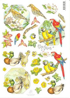3d 3d Sheets, Printable Crafts, Printables, 3d Cards, Background Images, Cardmaking, Rooster, 3 D, Projects To Try
