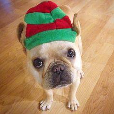 Someone get this elf-ing hat off of me stat!!