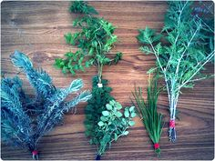 Dont let your garden go to waste! Heres how to dry your herbs for money-saving eating all winter long | Offbeat Home