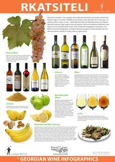Rkatsiteli - Georgian Wine Infographics (22) | Marani