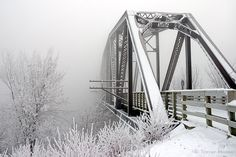 Love frosty, misty pictures