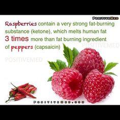 Raspberries contain ketone