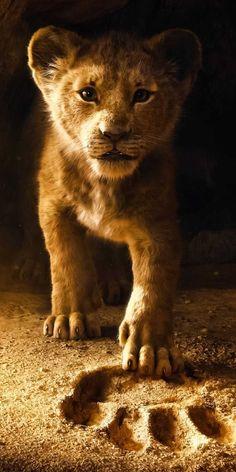 Der König der Löwen ist ein zukünftiger epischer Musikfilm des amerikanischen… The Lion King is a future epic music film of the 2019 American drama, … – The Lion King, Lion King Art, Lion King Movie, Lion Art, Disney Lion King, Lion King Remake, Lion King Poster, Lion King Quotes, Lion King Drawings