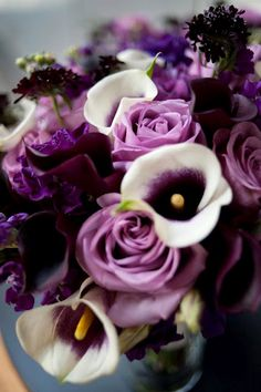 Picasso calla lilies, Deep eggplant-toned calla lilies and roses, lisianthus and stock