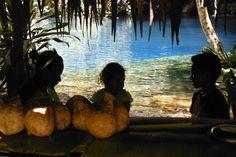 Coconuts & blue lagoons. Vanuatu.