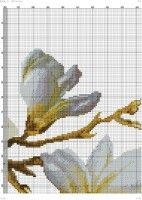 "Gallery.ru / kento - Альбом ""28"" Cross Stitch Bird, Cross Stitch Flowers, Cross Stitching, Embroidery Flowers Pattern, Flower Patterns, Embroidery Designs, Pretty Flowers, Colorful Backgrounds, Color Schemes"