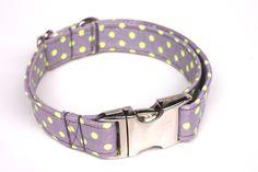 Hund: Halsbänder - gepunktetes Hundehalsband grau mit Neon Dots Punkt - ein Designerstück von stitchbully bei DaWanda