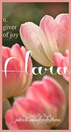 """Baby Girl Name: Alara. Meaning: Giver of Joy; """"One who brings brightness and happiness to the soul, to the heart."""" Origin: Persian; Turkish. https://www.pinterest.com/vintagedaydream/baby-names/"""