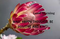 A collection of Beautiful Good Morning Images, beautiful good morning pictures, whatsapp good morning images and quotes. Sweet Good Morning Images, Morning Images In Hindi, Good Morning Picture, Morning Pictures, Friends Image, Happy Birthday Images, Make Happy, Cool Baby Stuff, Happy Thoughts