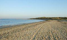 Studland Beach and Nature Reserve - Beach in Studland, Studland - Dorset