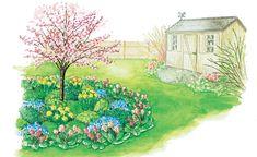 Der Frühlingsgarten soll die Wintertristesse vertreiben und kann deshalb nicht bunt genug sein. Passende Zutaten für ein farbenfrohes Frühlingsbeet sind eine rosa blühende Zierkirsche, der Narzissen, Bergenien und Vergissmeinnicht zu Füßen liegen.