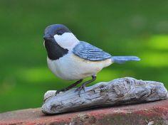 Bird Carving, Spring Decor, Black Capped Chickadee Songbird Wood Carving, SALE SHOP CLOSING - Hand Made