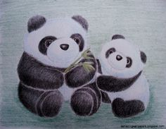 Baby Panda Drawing In Pencil | Amazing Wallpapers Panda Drawing, Panda Birthday, Cool Wallpaper, Pencil Drawings, Cubs, Colored Pencils, Cute Babies, Awesome, Amazing
