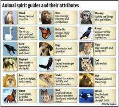 Animal spirit guides & their attributes..