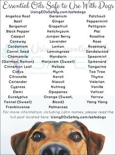 Great list of essential oils that are safe to use with dogs