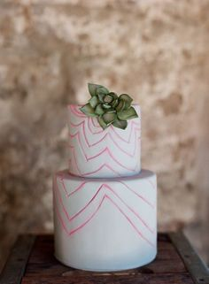 succulent topped with funky lines